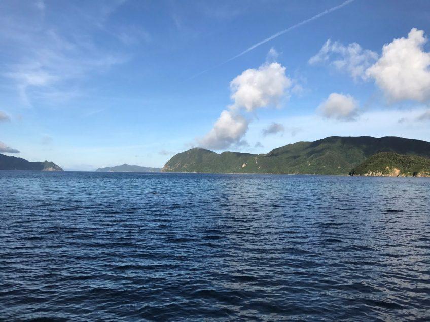 奄美大島 | スタッフブログ