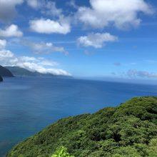 地元の奄美大島 | スタッフブログ