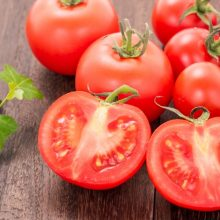 トマト   スタッフブログ